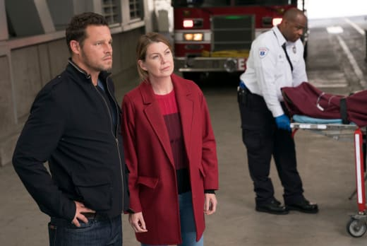 Scoping Things Out - Grey's Anatomy Season 14 Episode 7