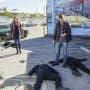 Surveying the Damage - NCIS: Los Angeles Season 8 Episode 17