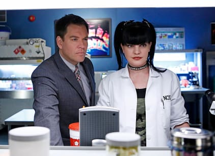 Watch NCIS Season 11 Episode 14 Online