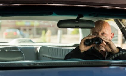 Better Call Saul Season 3 Episode 2 Review: Witness