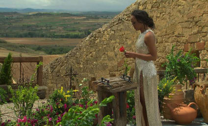 The Bachelorette Finale Review: The Final Rose (And Final Argument)