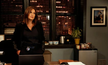 Law & Order: SVU Season 17 Episode 6 Review: Maternal Instincts