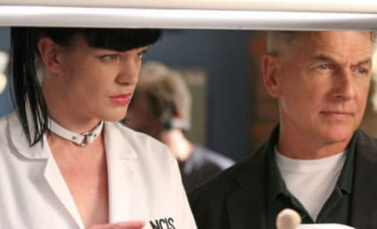 Pauley Perrette and Mark Harmon Feud: CBS Boss Reacts to NCIS Actor's 'Assault' Claim
