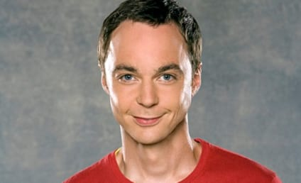 The Big Bang Theory Cast: Before They Were Scientists (And a Waitress)