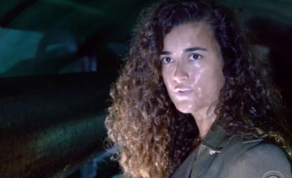 NCIS Season 17 Trailer Reveals Why Ziva is Back