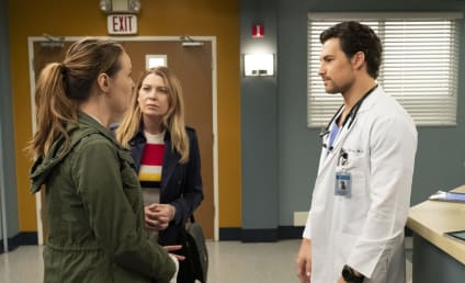 Grey's Anatomy Season 15 Episode 24 Review: Drawn to the Blood