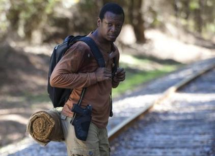 Watch The Walking Dead Season 4 Episode 13 Online