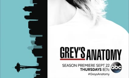 Grey's Anatomy Spoilers: Look Who's Getting a Love Interest!