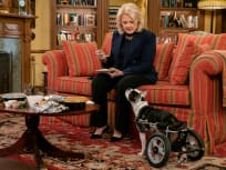 Murphy Brown Season 11 Episode 11 Review: The Wheels on the Dog Go 'Round and 'Round