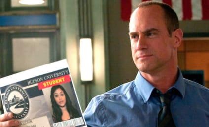Law & Order: SVU Spinoff Starring Christopher Meloni Ordered to Series at NBC