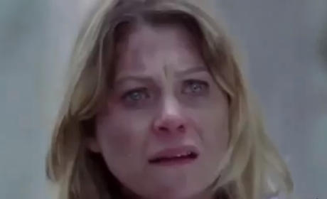 Meredith After the Crash