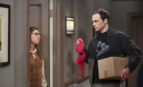Post Break Up - The Big Bang Theory