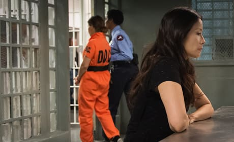 Lucy Liu on Elementary Season 3 Episode 14