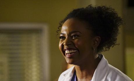 Smiling Beauty - Grey's Anatomy Season 13 Episode 22
