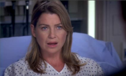 Grey's Anatomy Season 17: How Short Will It Be?