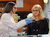 The Big Bang Theory Season 5 Episode 8