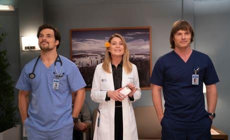 Meredith, Link DeLuca - Grey's Anatomy - General Hospital