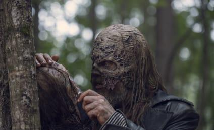 The Walking Dead Season 9 Episode 12 Review: Guardians