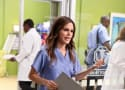 Hart of Dixie: Watch Season 3 Episode 9 Online
