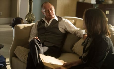 The Blacklist: 17 Times Red Taught Us About Life