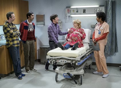 Watch The Big Bang Theory Season 10 Episode 11 Online
