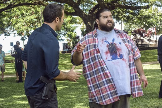 A Conspiracy Theorist Murder - Hawaii Five-0