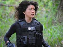 Hawaii Five-0 Season 6 Episode 21