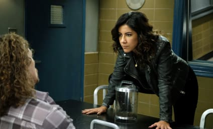 Brooklyn Nine-Nine Season 6 Episode 10 Review: Gintars