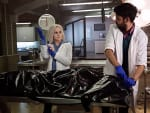 Digging In - iZombie