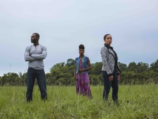 Queen Sugar Cast Photo