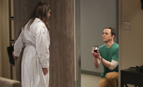 The Big Bang Theory Season 10: Best Episode, Most Surprising Moment and More!