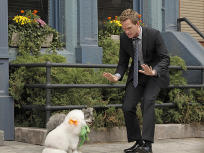 How I Met Your Mother Season 8 Episode 5