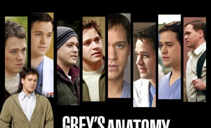 Have You Seen This Grey's Anatomy Character?