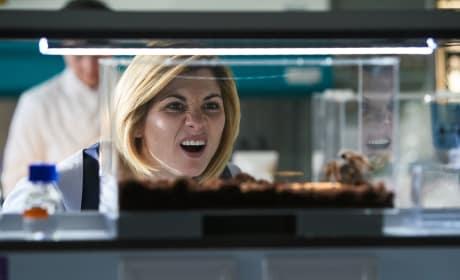 Itsy Bitsy... NOT - Doctor Who Season 11 Episode 4