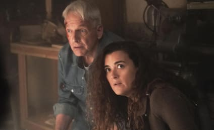 NCIS Reveals When Cote de Pablo Returns as Ziva