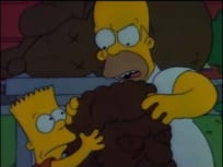 The Simpsons Season 1 Episode 8