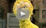 Sesame Street Star Caroll Spinney Retiring After 49 Years