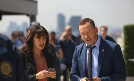 The Whole Story - Blue Bloods
