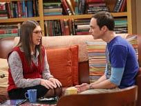 The Big Bang Theory Season 7 Episode 15