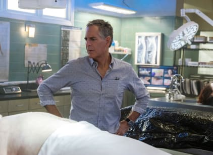 Watch NCIS: New Orleans Season 5 Episode 13 Online