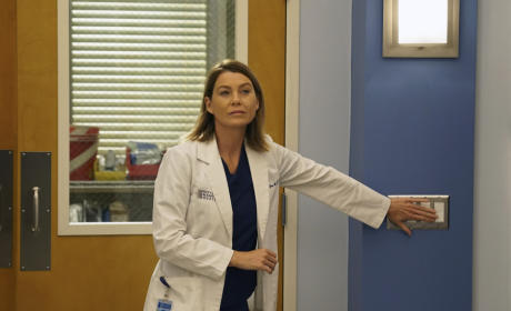 Return of Meredith - Grey's Anatomy Season 12 Episode 1