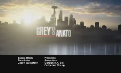 Grey's Anatomy Episode Preview: Taking Charge
