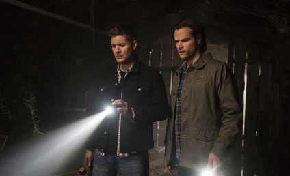 Supernatural Season 11 Episode 19 Review: The Chitters