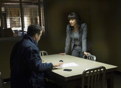 Watch Blue Bloods Season 5 Episode 16 Online