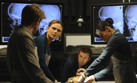 Temperance Brennan at Work