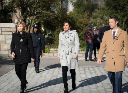 Watch Law & Order: SVU Season 18 Episode 9 Online