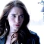 Knowing Too Much - Wynonna Earp