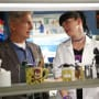 Mark Harmon And Pauley Perrette Photo