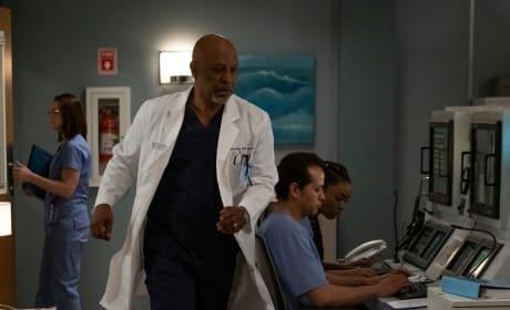 Call to Action  - Grey's Anatomy Season 15 Episode 25