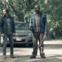 Traveling Companion - Fear the Walking Dead Season 4 Episode 11